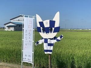かかし(燕第一まち協) (8).jpg