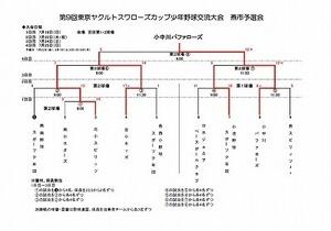 スワローズカップ少年野球交流大会 (17).jpg