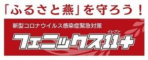 フェニックス11報道資料用(小).jpg