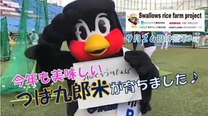 ライスファーム動画(サムネ・もと).jpg