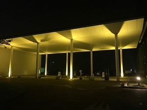 庁舎ライトアップ (2).jpg