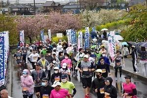 燕さくらマラソン大会 (11).jpg