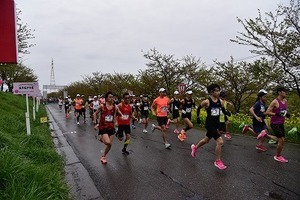 燕さくらマラソン大会 (20).jpg
